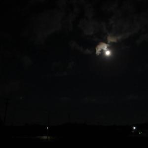 25暗い (2)