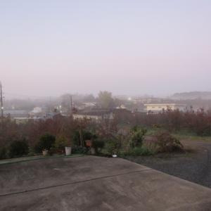 28霧 (1)