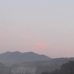 28霧 (3)