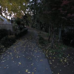 01師走 (2)