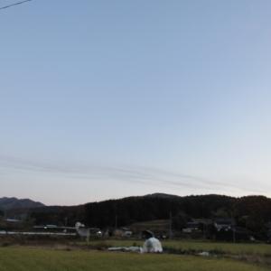 02黄葉 (4)