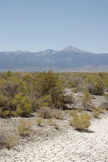 blog TAKE 99 near Great Basin NP, Wheeler Peak, 6 & 50W 27507-8.8.07.jpg