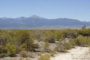 blog TAKE 99 near Great Basin NP, Wheeler Peak, 6 & 50W 27509-8.8.07.jpg
